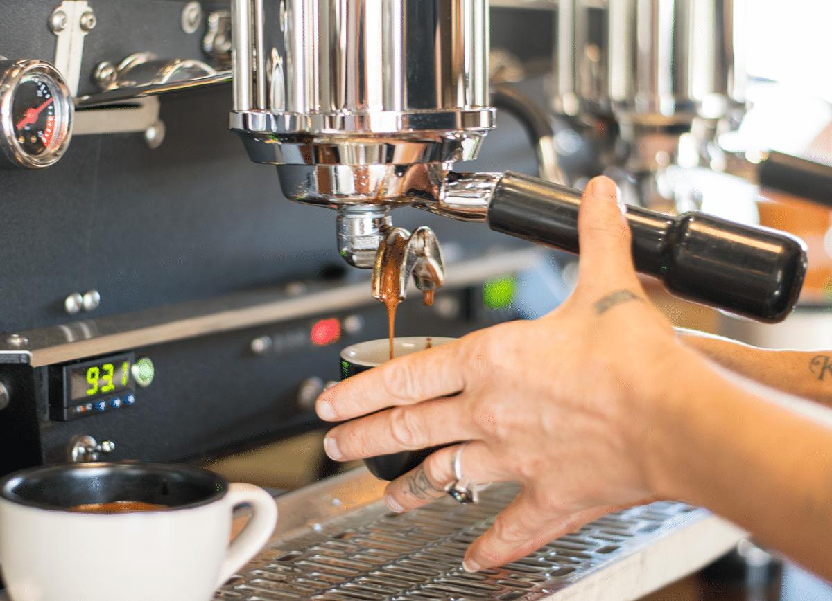 Scrub-Turkey-Warana-Cafe-Coffee-1200px